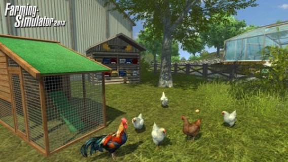 Игра Farming Simulator 2013 куры