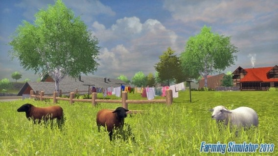 Игра Farming Simulator 2013 овцы