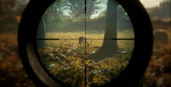 theHunter Call of the Wild Игра